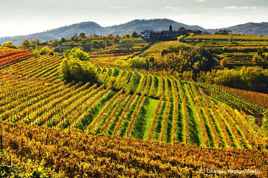 Friuli-Venezia Giulia: Best in Travel
